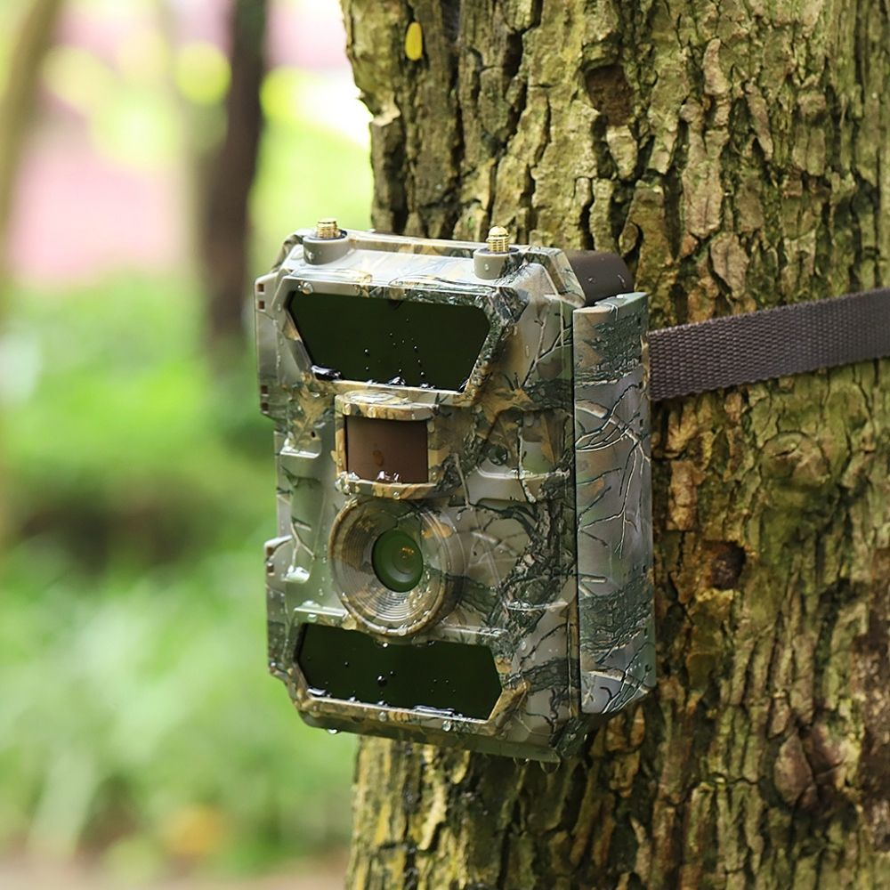 wildlife cameras for reduced night vision glow and high-resolution surveillance photos