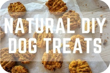 Natural DIY Dog Treats: Homemade, Gluten-Free, Grain-Free, Vegetarian Dog Biscuits