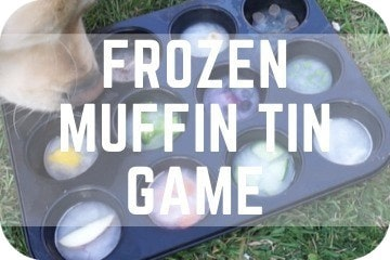 Frozen Muffin Tin Enrichment Activity For Dogs: Easy and Cheap DIY Canine Games