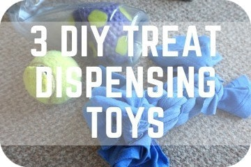 3 DIY Treat Dispensing Dog Toys: Homemade Enrichment, Easy, Cheap, Canine Game