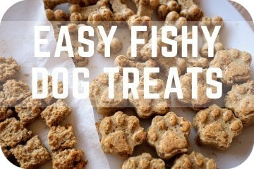 Natural DIY Tuna Fish And Coconut Dog Treats: Easy, Homemade, Gluten-Free Biscuits