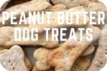 Peanut Butter Dog Treats Recipe: Easy, Natural, Simple, and Healthy Dog Biscuits