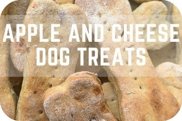 Cheese and Apple Dog Treats Recipe: Easy, Natural, Simple, and Healthy Dog Biscuits