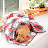 puppy_in_a_blanket