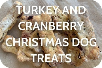 turkey_and_cranberry_christmas_dog_treats
