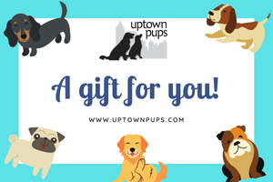 Uptown Pups Gift Card - Uptown Pups