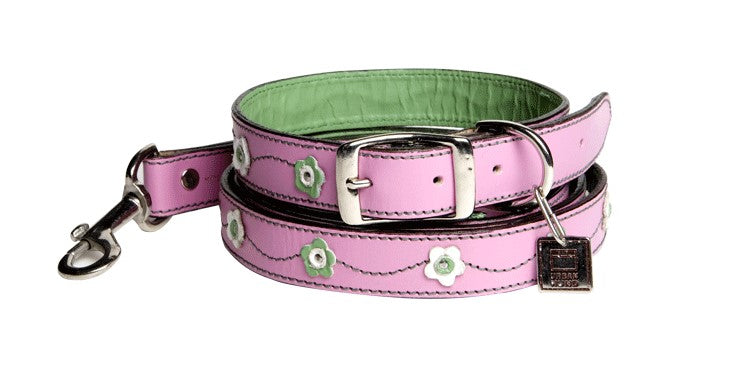Urban Hund Tiergarten Dog Collar