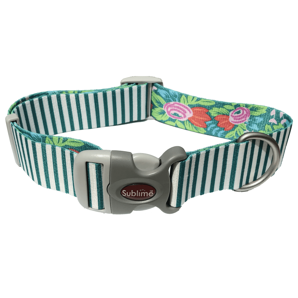 Sublime Green Stripe Flower Adjustable Collar - Uptown Pups
