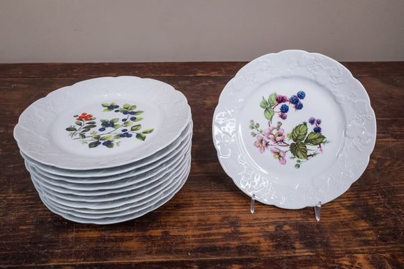 "Dansk Porcelain ""Ivy"" Accent Salad Fruit Design Plates Set of 11"