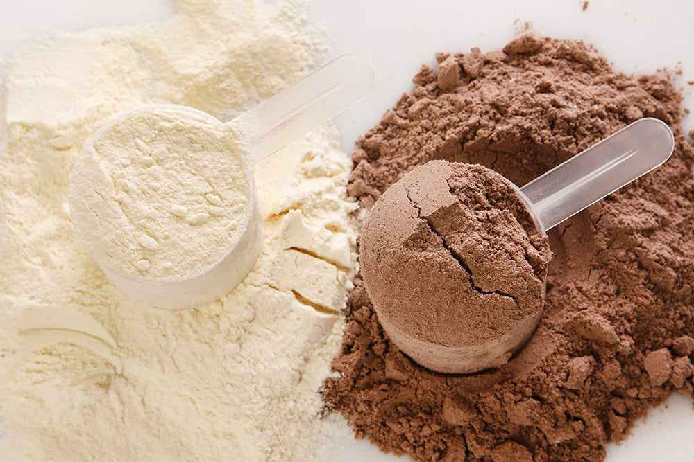 Whey and Casein Proteins