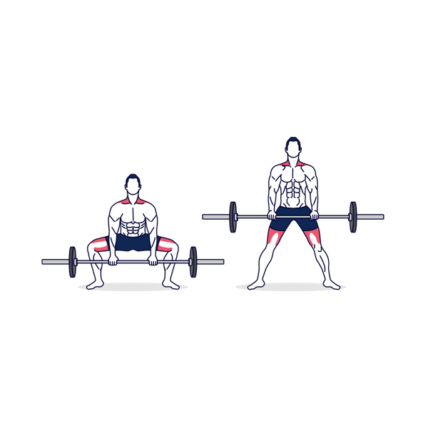 Barbell Sumo Deadlift Illustration
