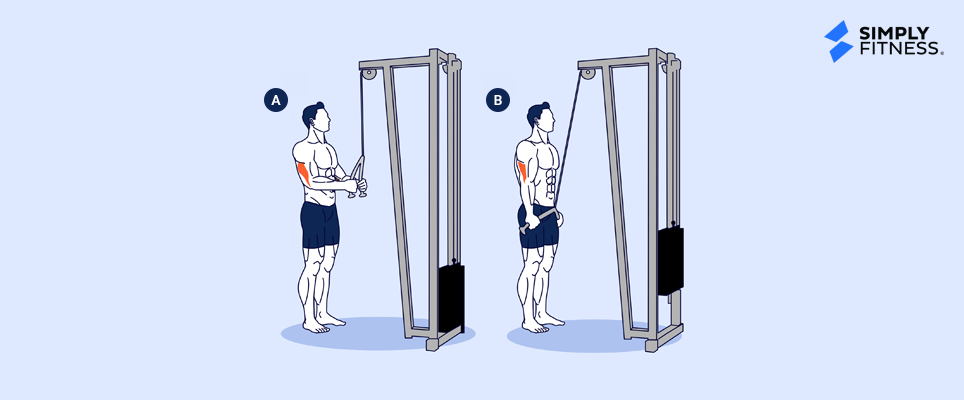 Cable Rope Pushdown