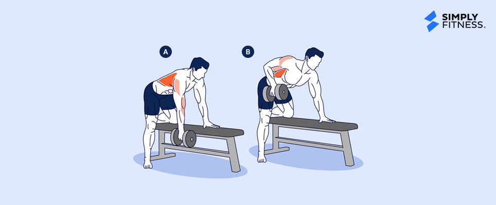 Dumbbell Bent Over Row (Single Arm)