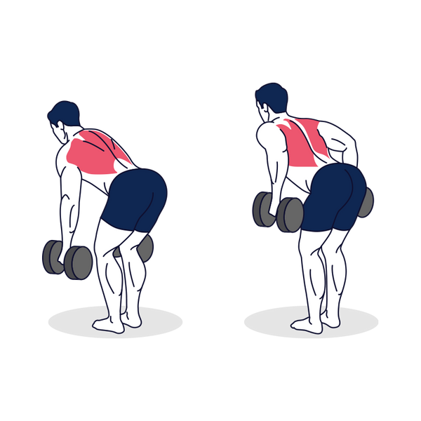 Dumbbell Bent Over Row Illustration