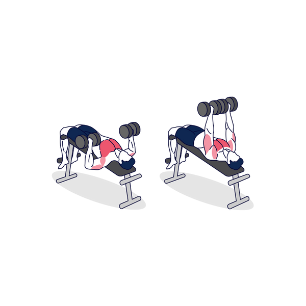 Dumbbell Declined Bench Press Illustration