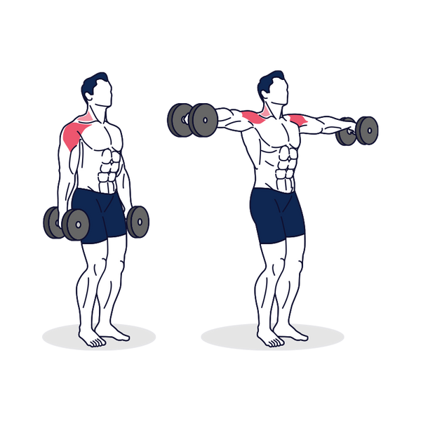 Dumbbell Lateral Raise Illustration