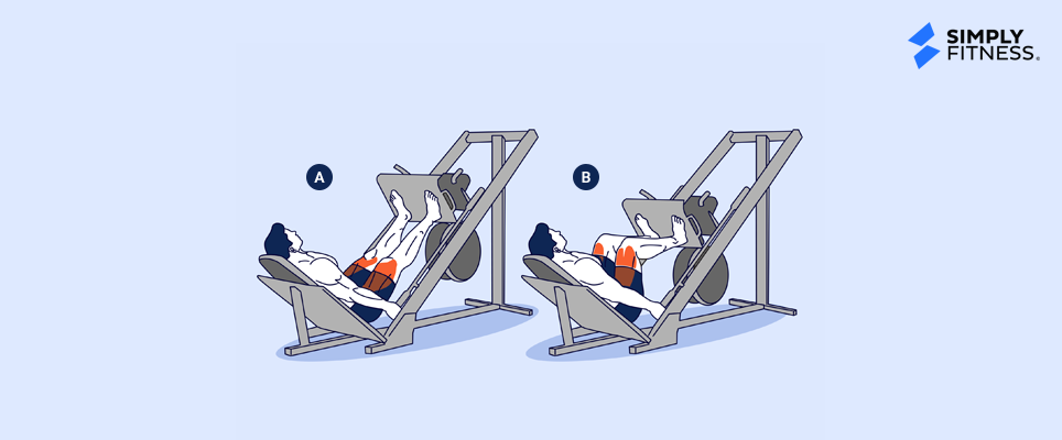 Leg Press Illustration