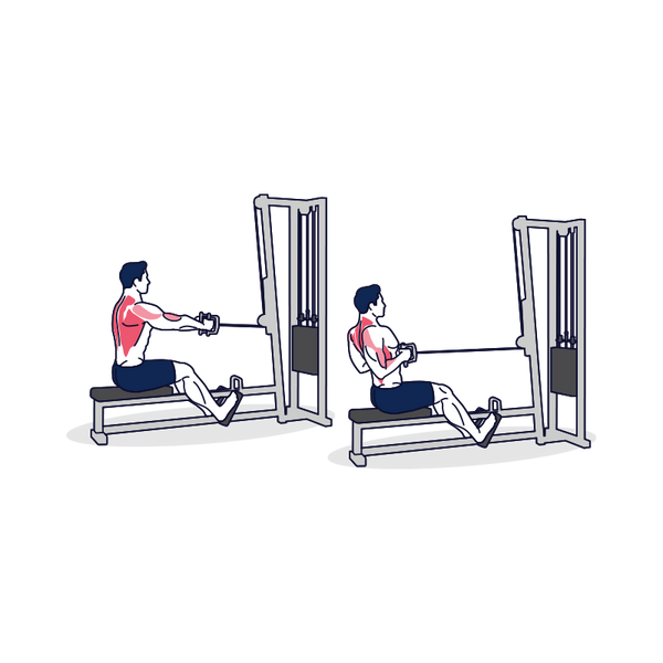 Seated Cable Row Illustration