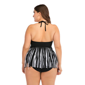 Plus Size Two Piece Swimsuit
