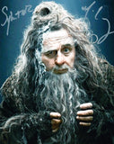 SYLVESTER McCOY as Radagast The Brown - The Hobbit