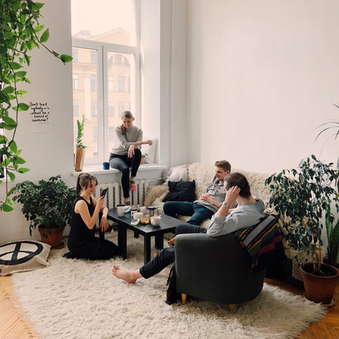 7 Indoor Plants That Are Great for Apartments