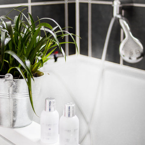 Five Reasons Why Having Plants in Your Bathroom Is a Must