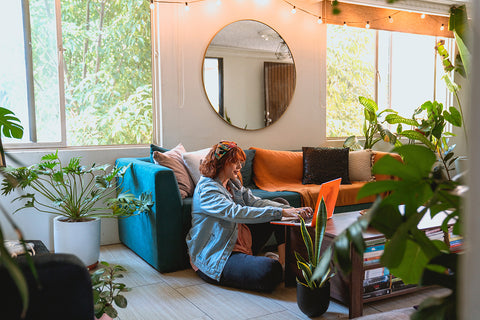 Why every home needs more house plants