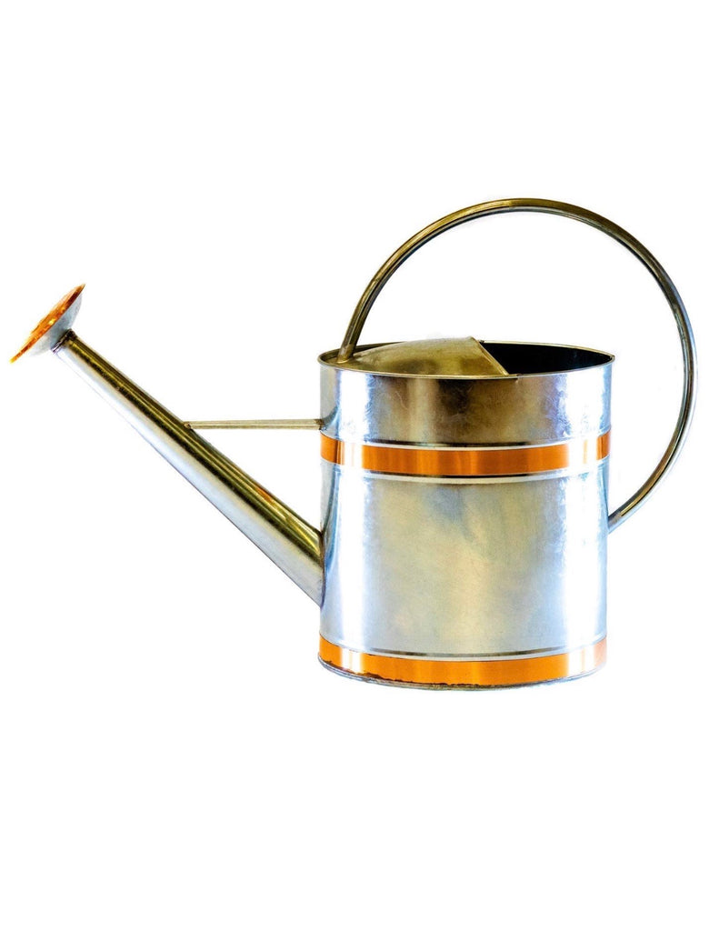 Zaccs Can Can Metal Watering can 2 Gallon