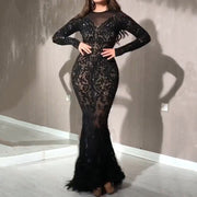 Sequined Feather Perspective Bodycon Evening Dress