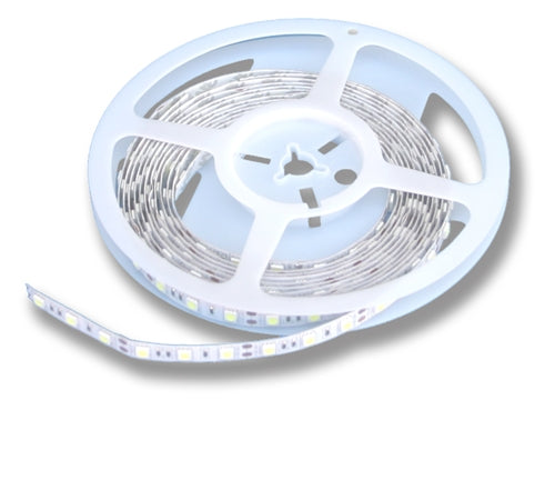 "Cool White LED Strip (12V, Indoor, Single Density, 16'4"" Reel) - LiteControls"