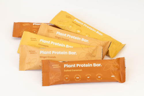Nothing Naughty Plant Protein Bar - Natural