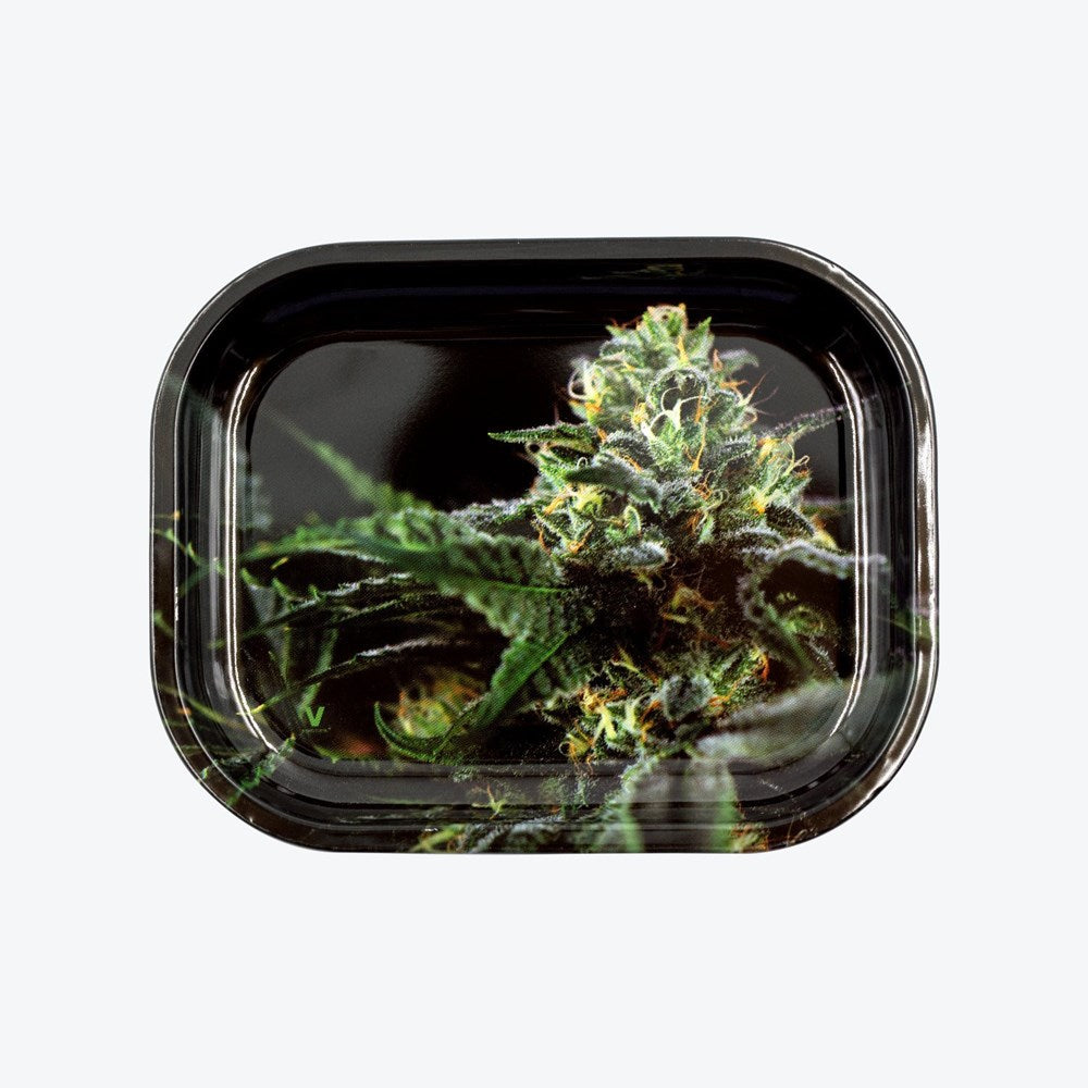 STRAINS: OG KUSH METAL TRAY