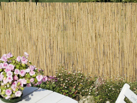 Apollo Garden - Reed Screen 1m x 4m Garden Screening | Snape & Sons