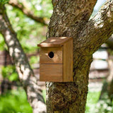Chapelwood - Classic Nest Box Bird Nesting Boxes | Snape & Sons