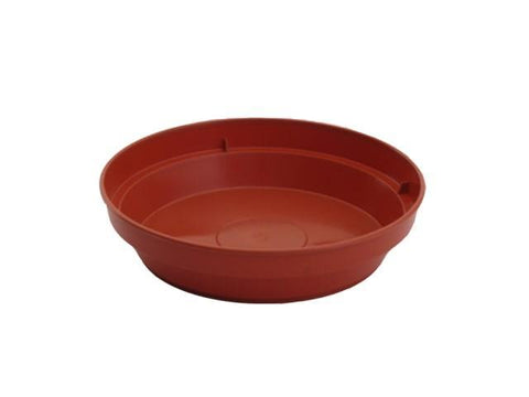 Sankey - Flower Pot Saucer 4.5in (4.5-5in pots) Flower Pot Saucers | Snape & Sons