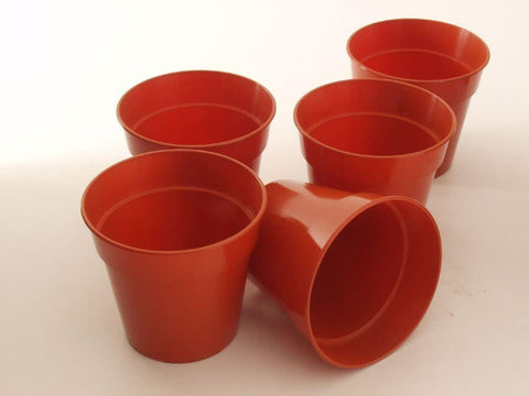 Ward - Flower Pot 5in / 12.5cm Flower Pots | Snape & Sons