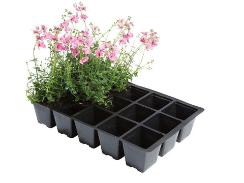 Worth - 15 Cell Insert Seed Trays x5 Seed Trays | Snape & Sons