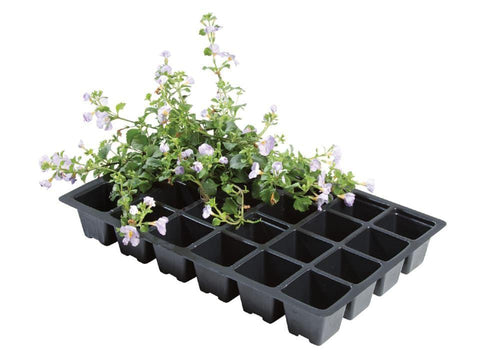 Worth - 24 Cell Insert Seed Trays x5 Seed Trays | Snape & Sons