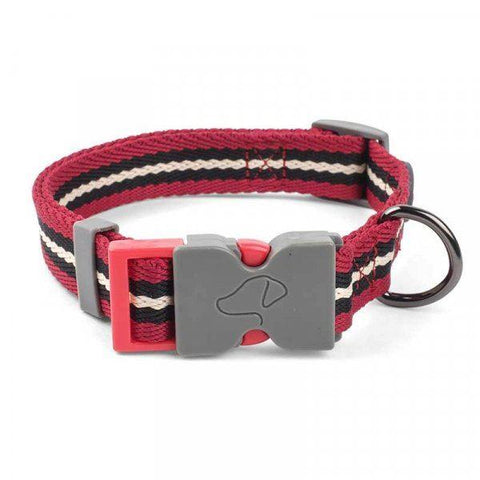Zöon Pets - Dog Collar Durham Small Dog Collars | Snape & Sons