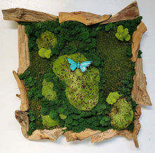 Load image into Gallery viewer, Decograss Green Art Wall With Real Moss Preserved