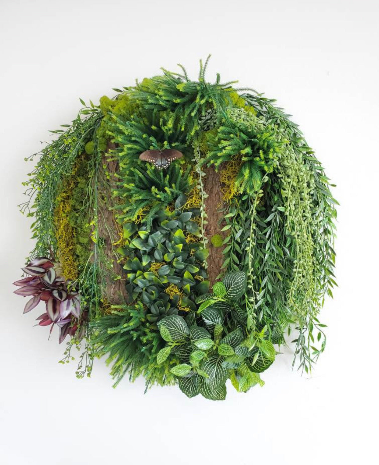 Decograss Circle of Life Green Wall