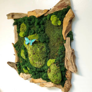Decograss Green Art Wall With Real Moss Preserved