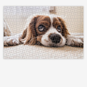 Custom Photo Jigsaw Puzzle - PuzzleMode.com