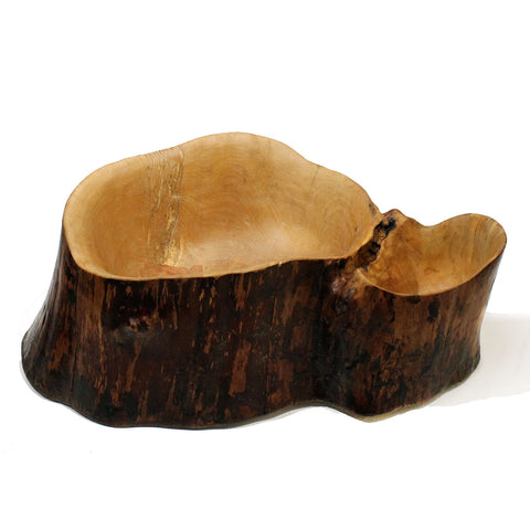 Birch Tree Base Bowl