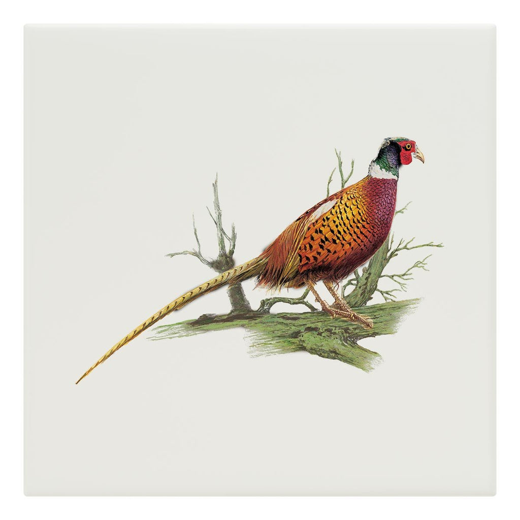 Cock Pheasant on Branch Tile - Countryman John