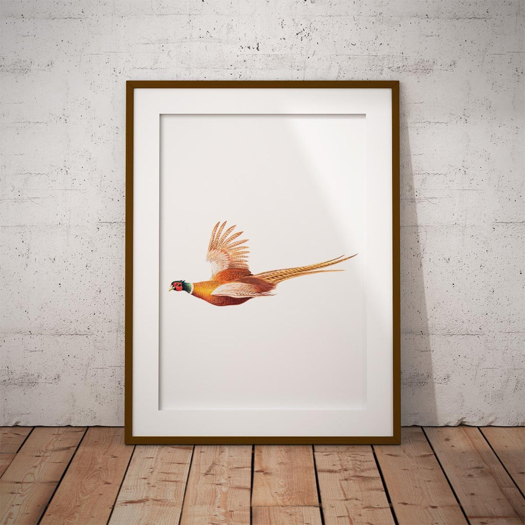 Pheasant in Flight Wall Art Print - Countryman John