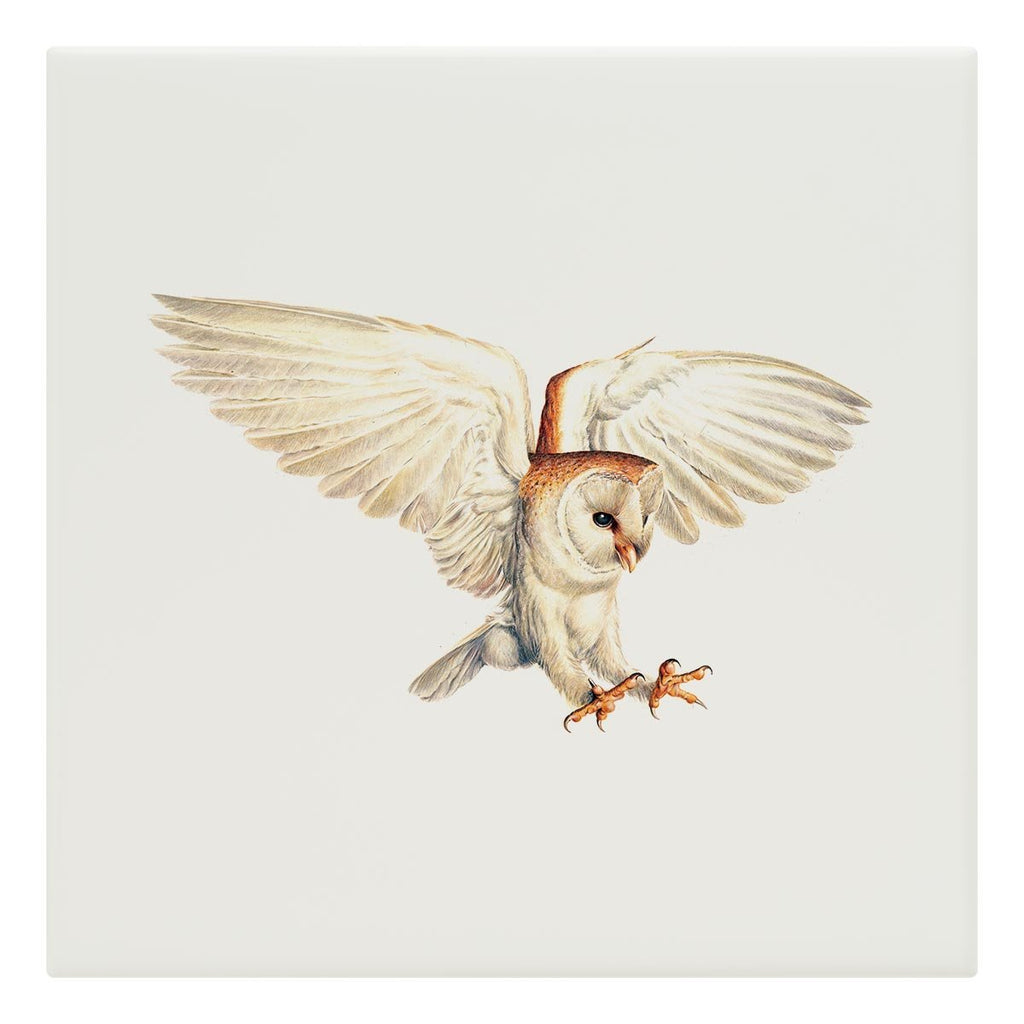Barn Owl Tile - Countryman John