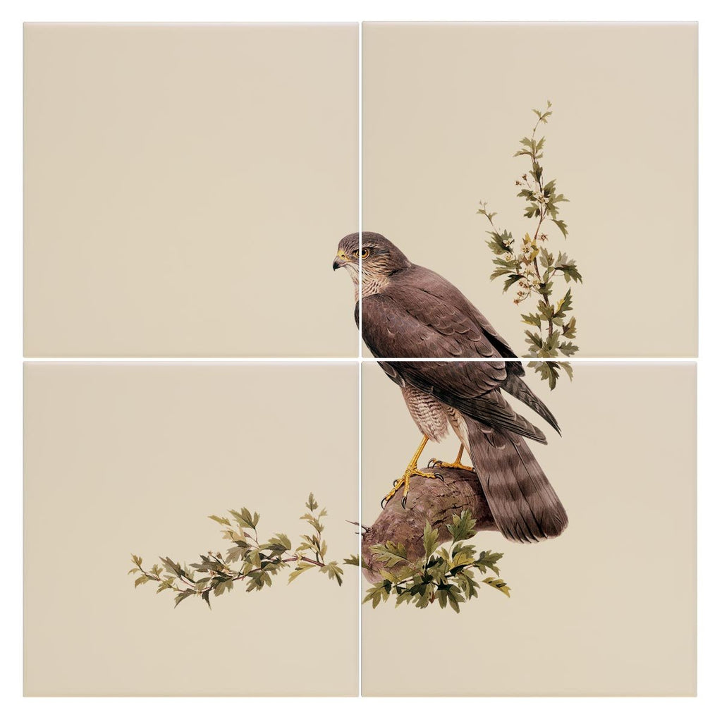 Sparrow Hawk Tile - Countryman John
