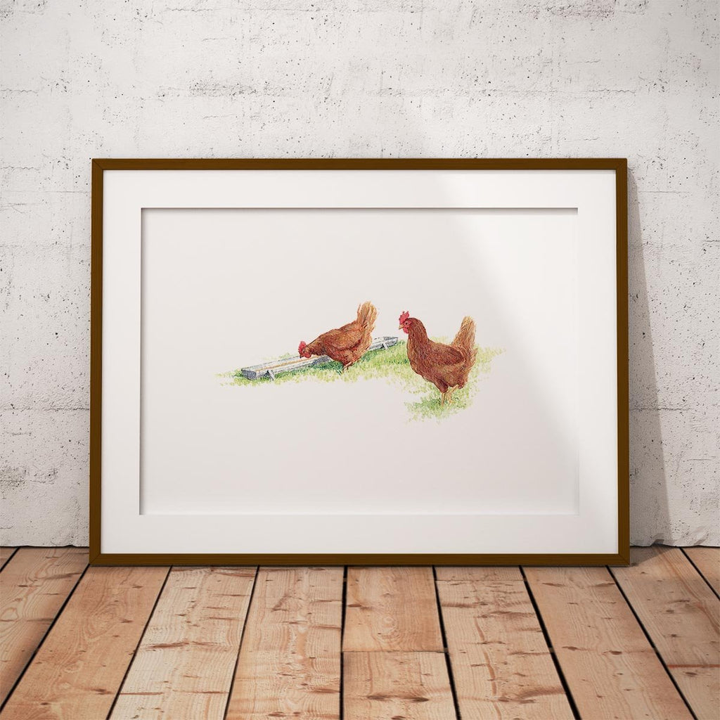 Drinking Hens Wall Art Print - Countryman John