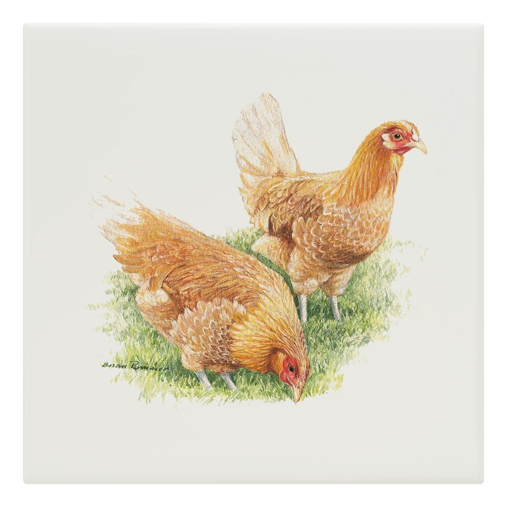 Feeding Hens Tile - Countryman John